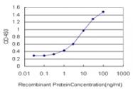 H00007097-M01 - CD282 / TLR2