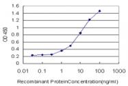 H00007097-M07 - CD282 / TLR2