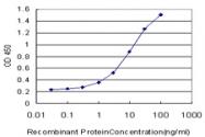 H00007162-M03 - Trophoblast glycoprotein (TPBG)