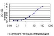 H00007266-M01 - DNAJC7 / TPR2