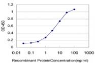 H00007276-M01 - Transthyretin / Prealbumin