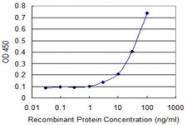 H00007278-M01 - alpha Tubulin / TUBA3C / TUBA2