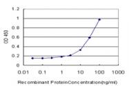 H00007421-M02 - Vitamin D3 receptor / NR1I1