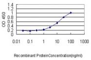 H00007447-M01 - Visinin-like protein 1 / HLP3