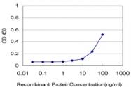 H00009340-M05 - GLP2 receptor