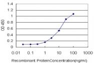 H00009344-M03 - TAO kinase 2 (TAOK2)