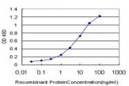 H00009586-M02 - CREB5