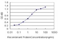 H00009706-M10 - Unc-51-like kinase 2 (ULK2)