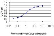 H00010000-M08 - AKT3 / PKB gamma
