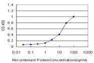 H00010083-M04 - USH1C  / Harmonin