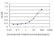 H00010148-M01 - EBI3 / IL27B