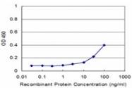 H00010216-M02 - Proteoglycan 4