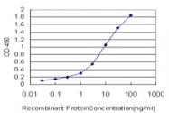H00010228-M01 - Syntaxin 6 / STX6