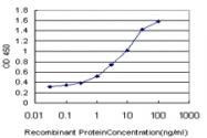 H00010333-M01 - CD286 / TLR6