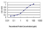 H00010590-M01 - Secretagogin (SCGN)
