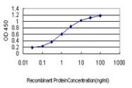 H00010661-M01 - Krueppel-like factor 1 (KLF1)