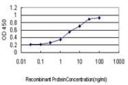 H00011044-M01 - PAPD7 / POLS / TRF4