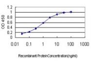 H00011130-M01 - ZW10 interactor / ZWINT