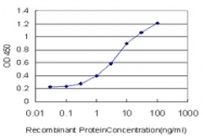 H00011199-M05 - Annexin A10 / ANXA10