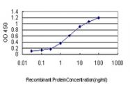 H00023308-M03 - CD275 / ICOS Ligand
