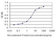 H00025797-M01 - Glutamyl cyclase / QPCT