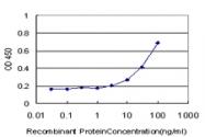 H00027242-M08 - TNFRSF21 / Death receptor 6 (DR6)