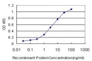 H00051280-M06 - Golgi membrane protein 1 / GOLM1