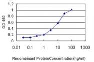 H00054986-M01 - Unc-51-like kinase 4 (ULK4)