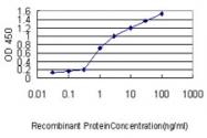 H00055686-M01 - Melanoregulin