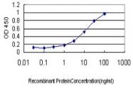 H00055937-M01 - Apolipoprotein M / Apo M