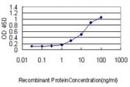 H00056287-M01 - Gastrokine-1