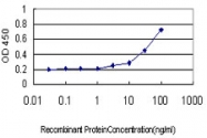 H00059350-M01 - Relaxin receptor 1 / RXFP1