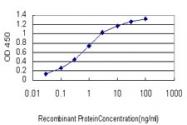 H00079648-M07 - Microcephalin-1