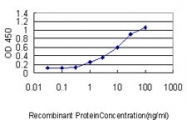 H00083891-M01 - Sorting nexin-25 (SNX25)