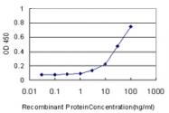 H00084750-M04 - Fucosyltransferase 10