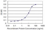 H00114757-M02 - Cytoglobin