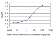 H00145258-M01 - Homeobox protein goosecoid / GSC
