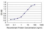 H00145258-M12 - Homeobox protein goosecoid / GSC