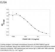 MAB-002 - Annexin A4 / ANXA4
