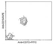 MAB3237 - CD72
