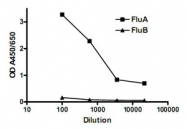 MAB3325 - Influenza A