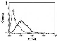 MAB3725 - CD252 / TNFSF4