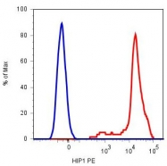 MAB5073 - CD42b / GPIbA