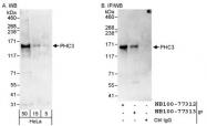 NB100-77312 - PHC3 / EDR3 / PH3