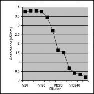 NB100-65202 - Lactotransferrin