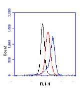 NB100-905 - HIF1A / HIF1 alpha