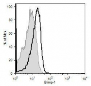 NB600-235 - PRDM1 / BLIMP1