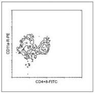 NBP1-27871 - CD11a / ITGAL