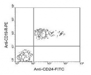 NBP1-28130 - CD24