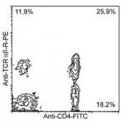 NBP1-28288 - CD4